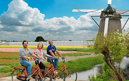 Rent a bicycle from us